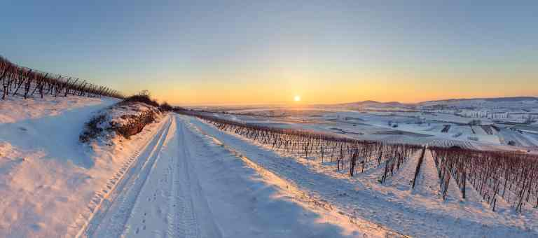Chemin du Wangenberg en hiver © Franck CHARLES