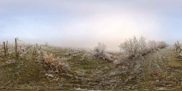 Vignoble de Traenheim ~ Photographeauteur.com