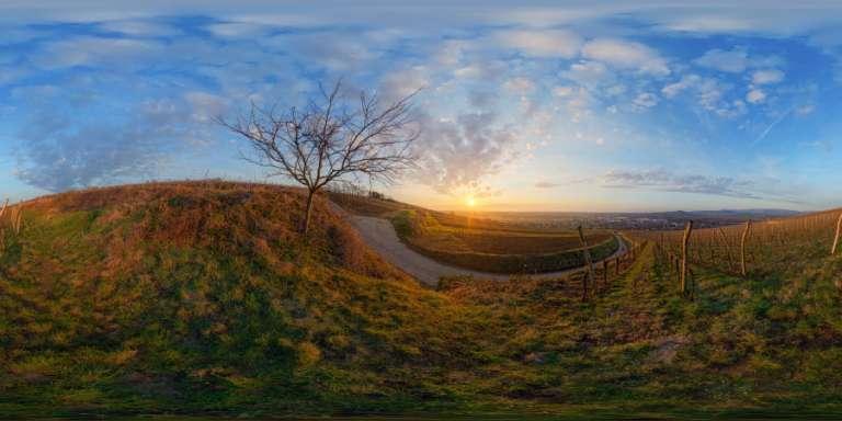 Marlenheim ~ Photographeauteur.com