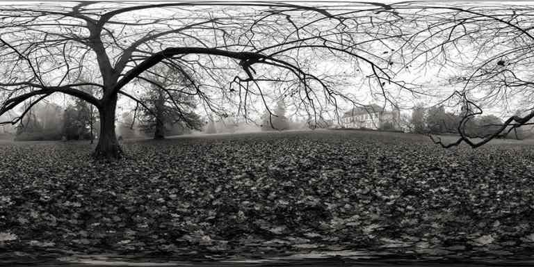Domaine du Windeck ~ Photographeauteur.com