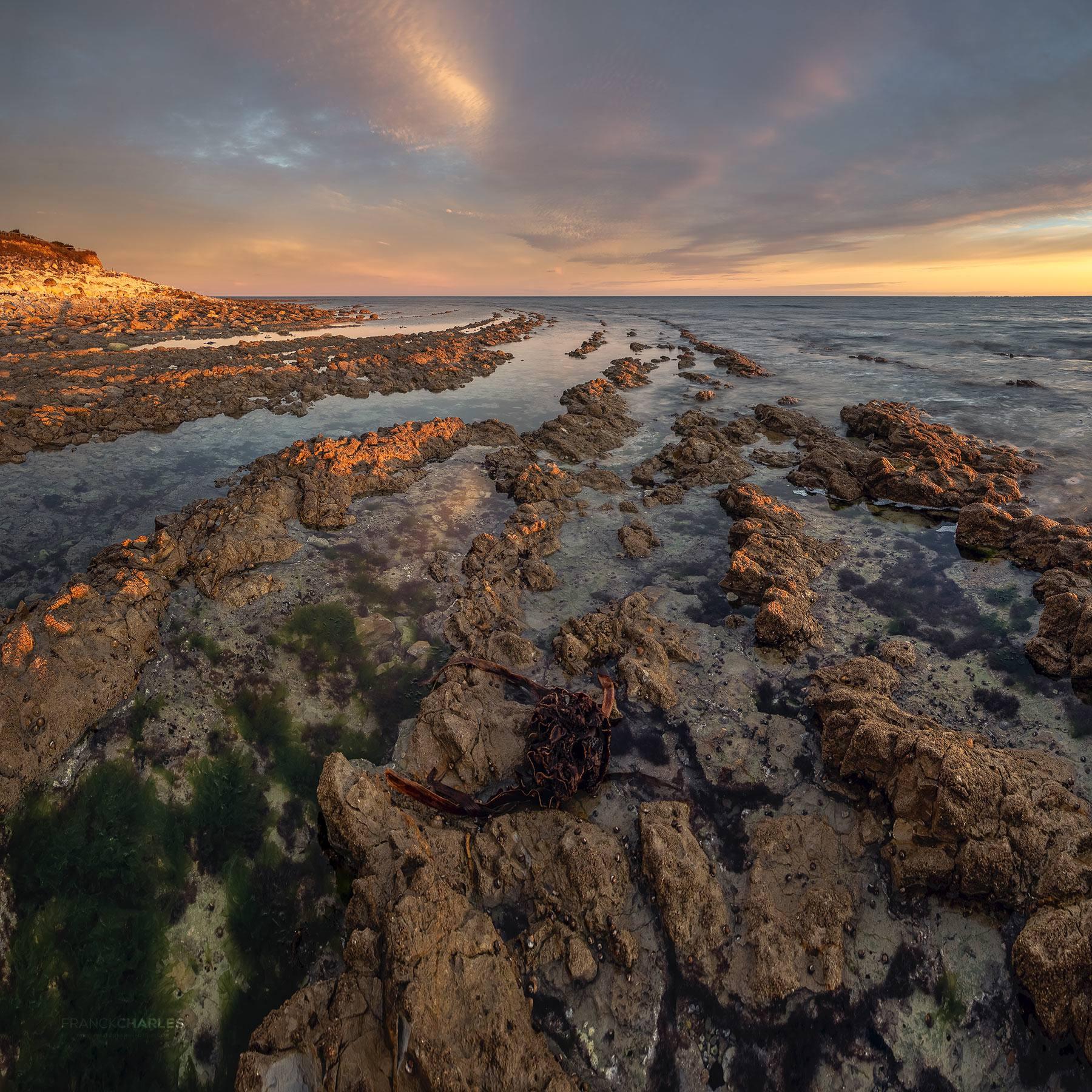 Rock's Oléron © Franck CHARLES