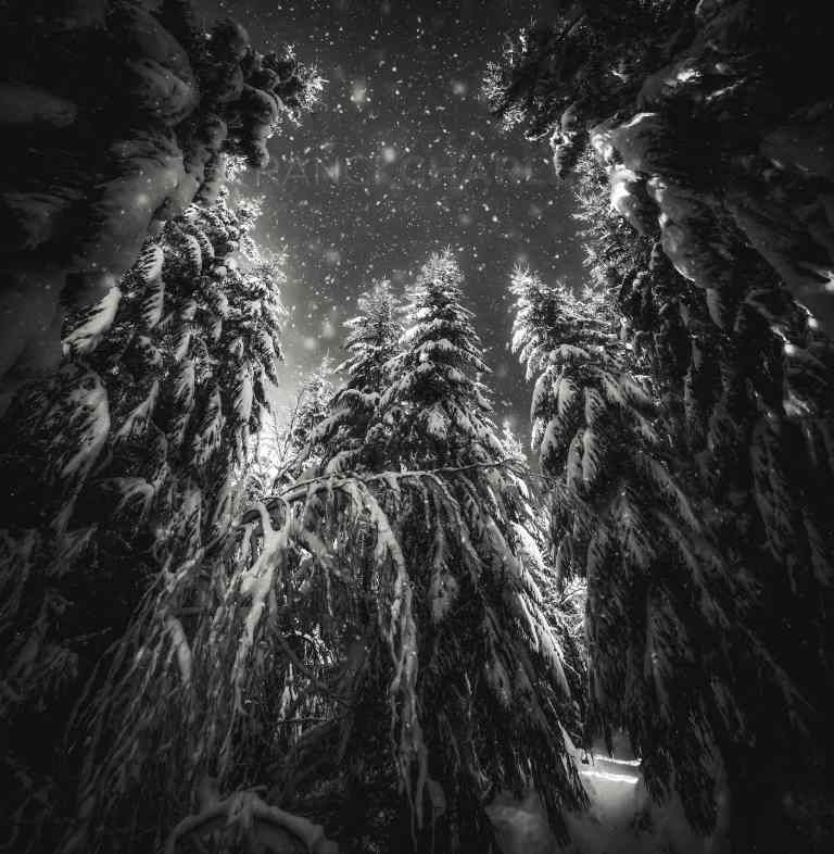 Esprit de Noël - Franck CHARLES