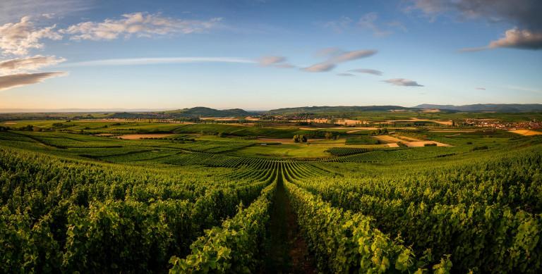 Wangenberg  © Franck CHARLES