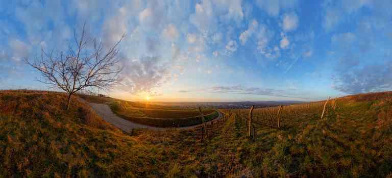 Depuis le Marlenberg  © Franck CHARLES