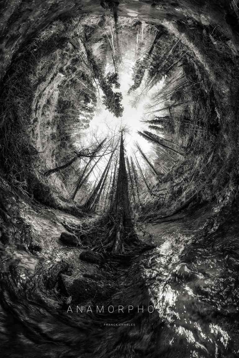 LA MOSSIG - ANAMORPHOSE © Franck CHARLES