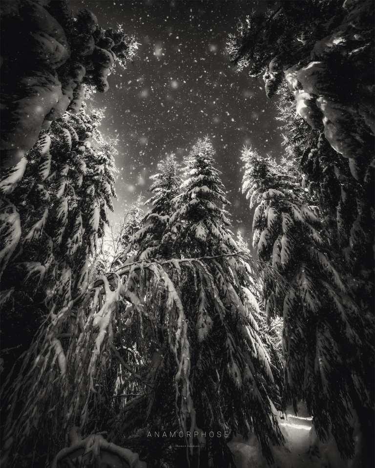 Esprit de Noël - ANAMORPHOSE © Franck CHARLES